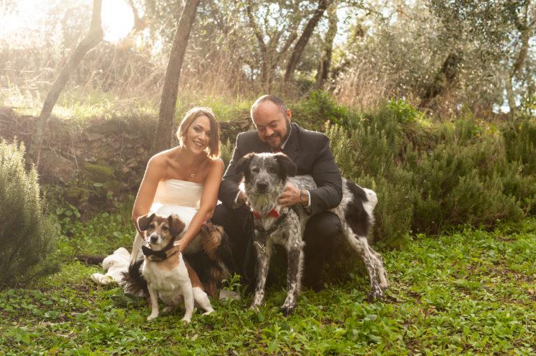 I nostri servizi e le nostre offerte - Dog Special Guest