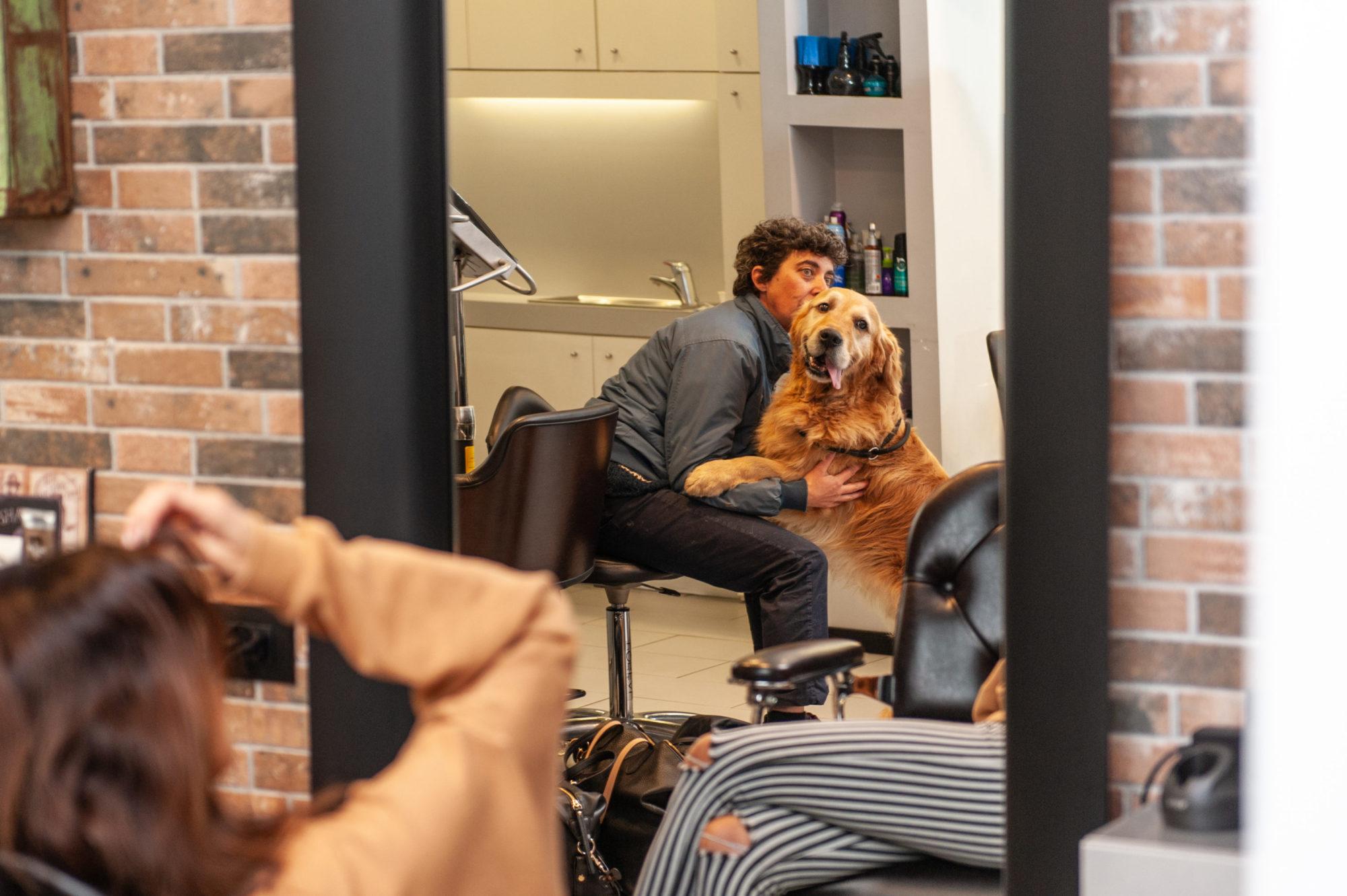 Duke _ event dog sitter