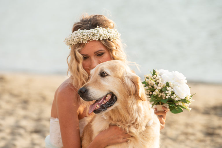 Damigella della sposa_ Dog Special guest
